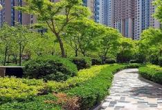 买房的时候有些购房者会忽略小区绿化率数值